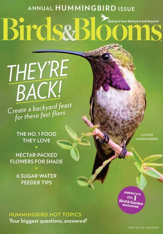 Birds & Blooms Magazine Cover