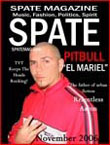 Best Price for Spate Magazine Subscription