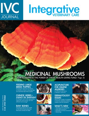 Best Price for Integrative Veterinary Care Journal Subscription