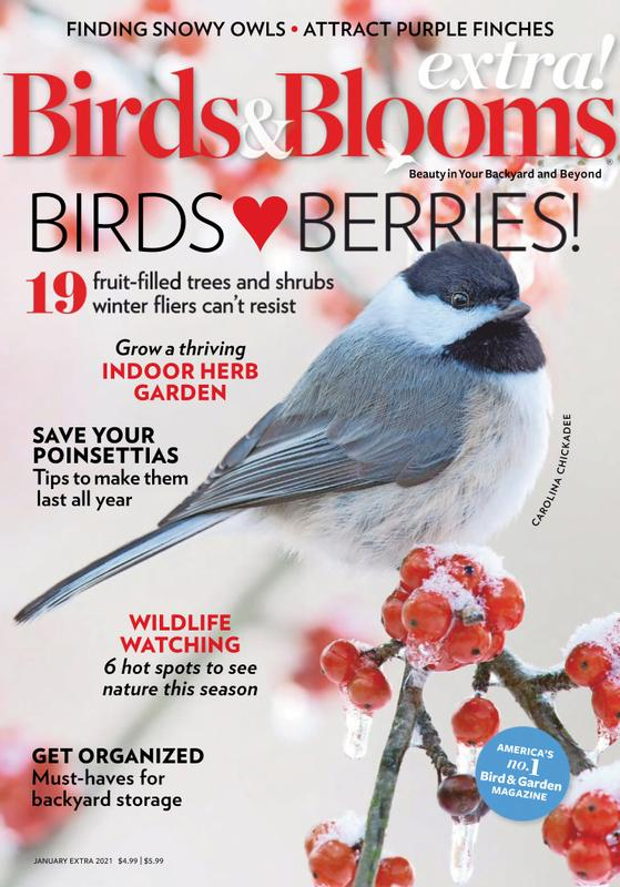 Birds & Blooms Extra Magazine Cover