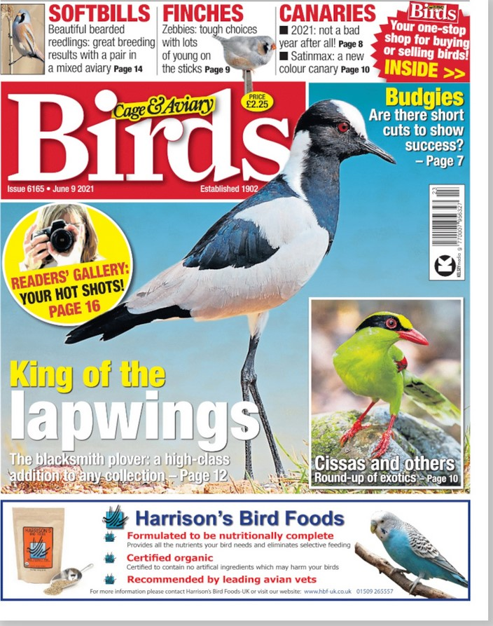 Cage & Aviary Birds (UK) Magazine Cover