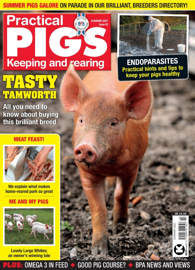 Practical Pigs (UK) Magazine Cover