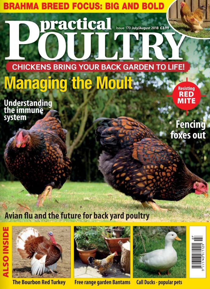 Practical Poultry (UK) Magazine Cover
