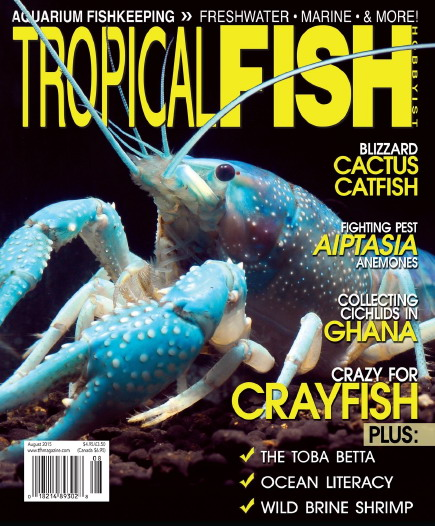 Tropical Fish Hobbyist - Digital Magazine