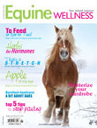 Equine Wellness - Digital Magazine